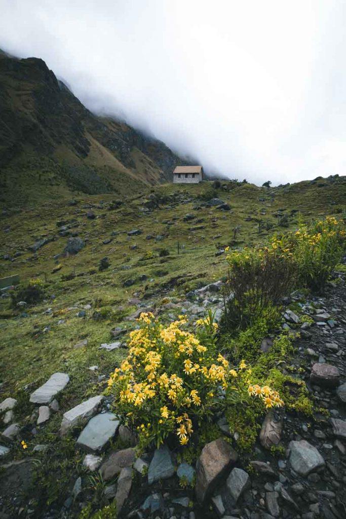 tiny little cabin on the salkantay trek